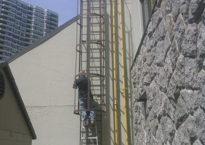 Ladder Cage
