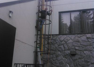 ladder-cage-2